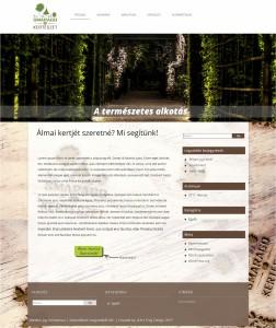 Webdesign (Fiktív)